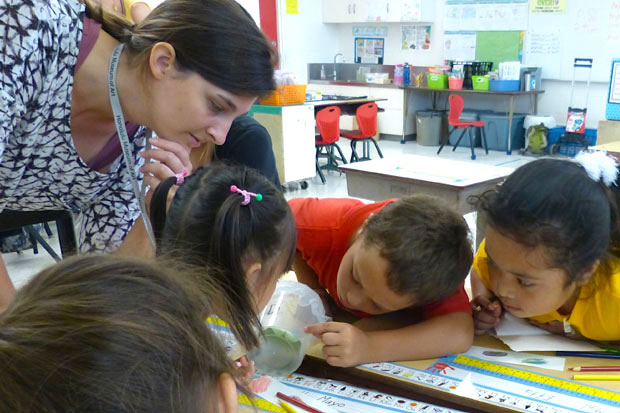 Teaching artist Jordan Koffman and QKE first graders take a close look at their tiny caterpillar before drawing it.